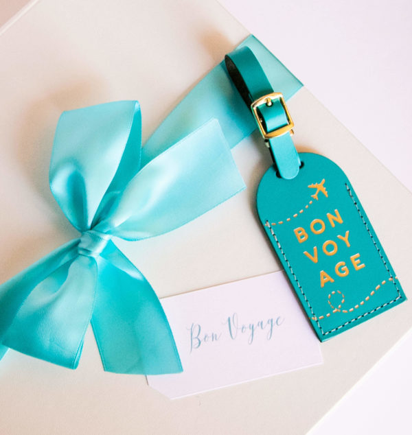 blue bow with luggage tag